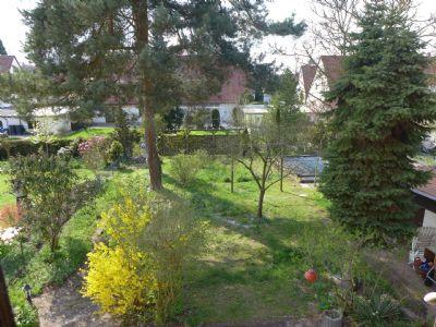 06-Blick-in-den-Garten