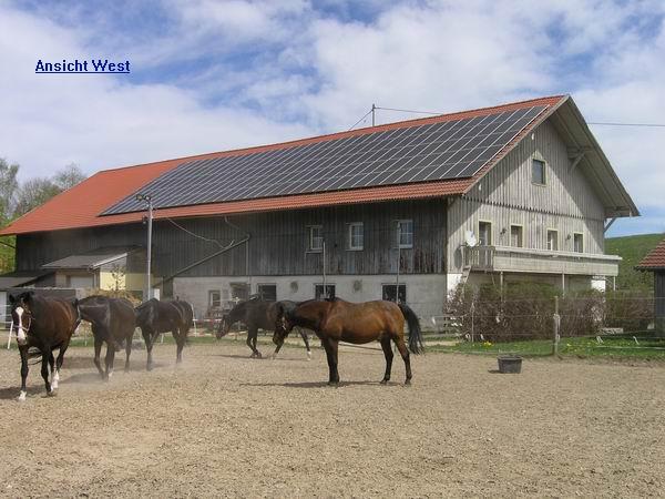 Bauernhof Mit Reitplatzpferdeboxen In Fastalleinlage Nördlich Von