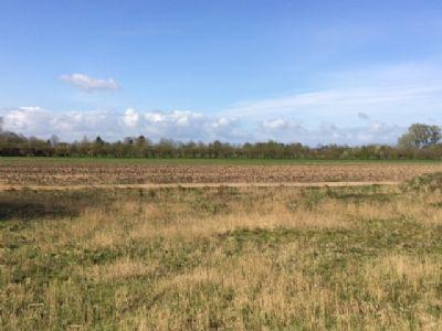 Moorrege Grundstücke, Moorrege Grundstück kaufen