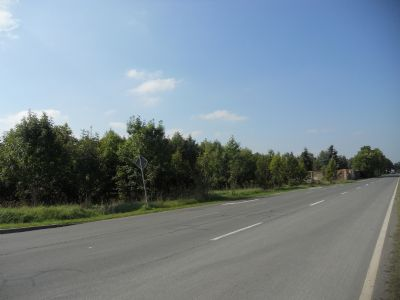 Gut ausgebaute Zufahrtsstraße