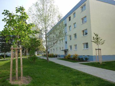 Ludwigshafen Wohnungen, Ludwigshafen Wohnung mieten