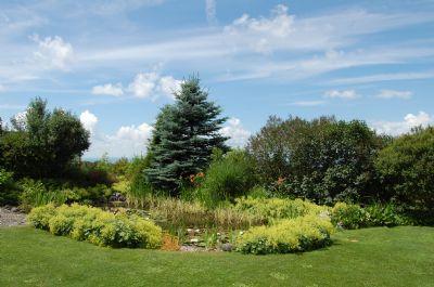 Teilansicht des angelegten Gartens