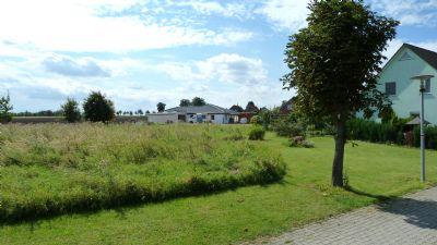 Grundstück   Eichenbarleben