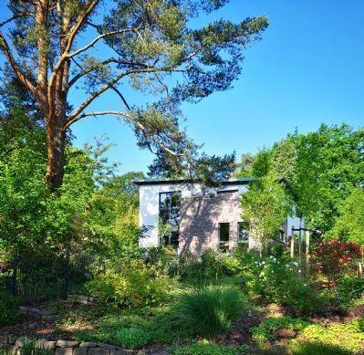 Modernes lichtdurchflutetes Architektenhaus mit naturnahem Garten