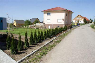 """Baugebiet: """"Am Kirschberg"""""""