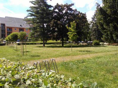 innerstädtischer Semmelweispark