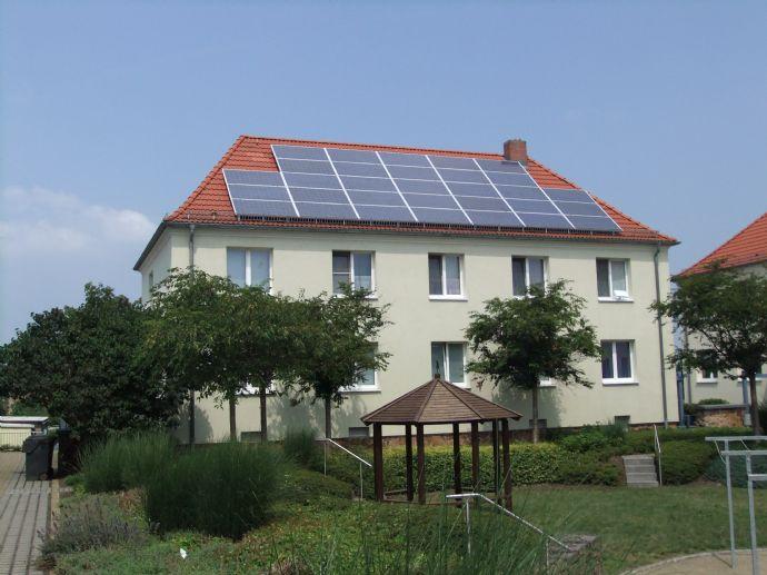 Bezugsfertig renovierte 2-Raum-Wohnung im Grünen