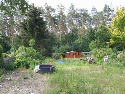 15827 Gemeinde Blankenfelde-Mahlow: Traumhaftes Baugrundstück am Wald in Ruhiglage, prov.