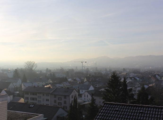 Doppelhaushälfte über den Dächern von Wyhlen