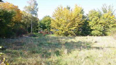 Hilzingen Grundstücke, Hilzingen Grundstück kaufen