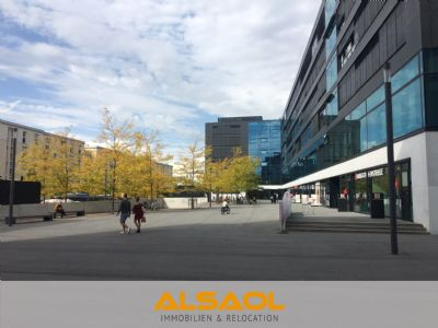 ALSAOL Immobilien: stylische 3-Zimmer Stadtwohnung mit Dachterrasse am Hirschgarten!