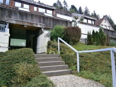 Bad Rippoldsau-Schapbach Wohnungen, Bad Rippoldsau-Schapbach Wohnung mieten