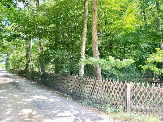 LEHNITZSEE-IMMOBILIEN: Rarität! Großes Naturgrundstück