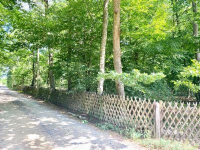 LEHNITZSEE-IMMOBILIEN: Rarität! Großes Naturgrundstück (Baugrundstück)