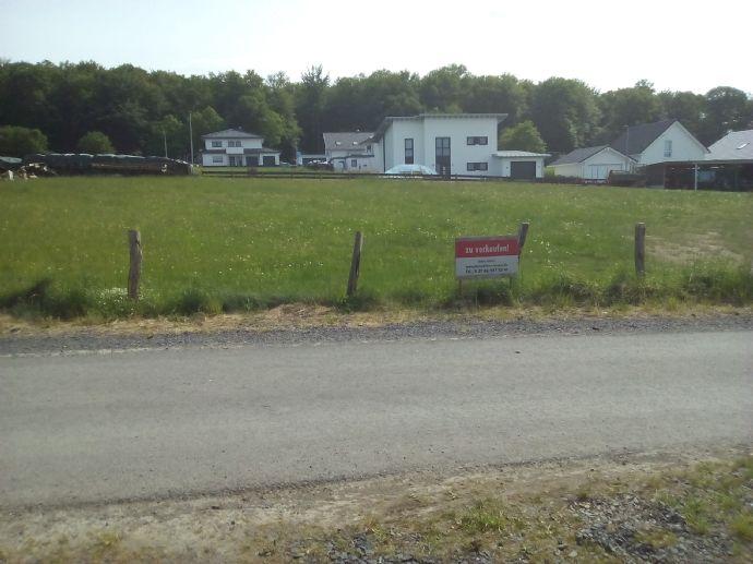 ein oder zwei Grundstücke (ca. 532m² + ca. 569m²) in Steinbach zu verkaufen