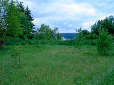 Kronach Grundstücke, Kronach Grundstück kaufen