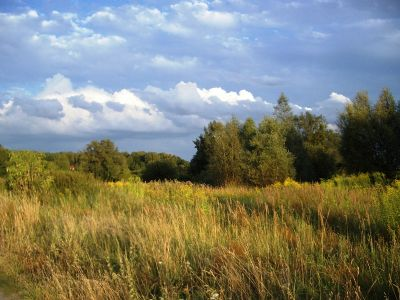 Seelow Grundstücke, Seelow Grundstück kaufen