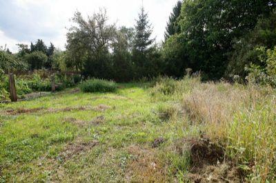 Grundstück (Blick 1)