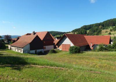 Lindenfels Bauernhöfe, Landwirtschaft, Lindenfels Forstwirtschaft
