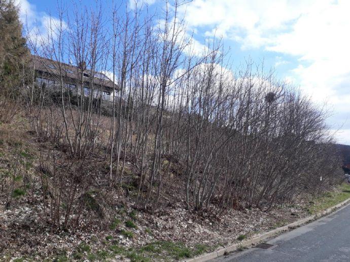 Zwei Baugrundstücke Hanglage in St. Andreasberg (Harz)