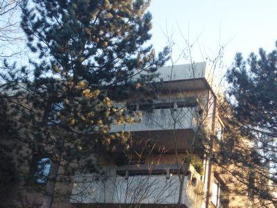 Sicht auf den Balkon (obere Wohnung)