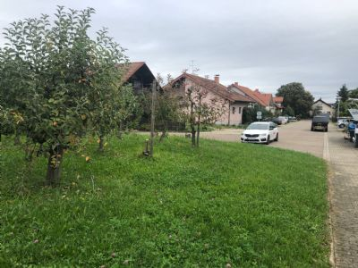 Sasbach Grundstücke, Sasbach Grundstück kaufen