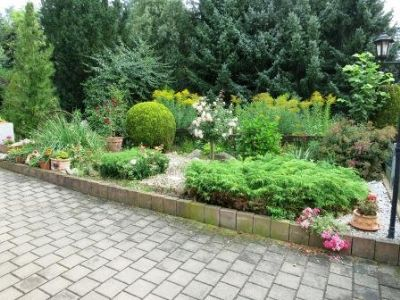 Mehrfamilienhaus_Oschatz_Garten