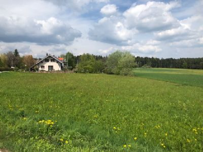 Neuweiler Grundstücke, Neuweiler Grundstück kaufen