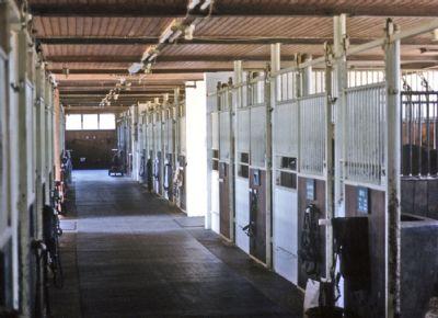 Hauptstall mit 27 Innenboxen