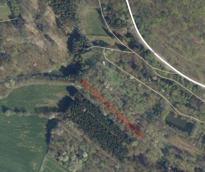 Waldgrundstück gegen Höchstgebot