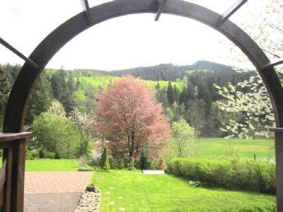 Frühling im Harz