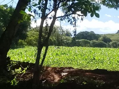Las Tablas Grundstücke, Las Tablas Grundstück kaufen