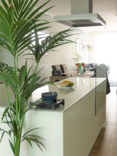Modernes Haus, 175 m², 4 Zimmer, Studio, 2 Bäder, Balkon, Terrasse mit Garten, Tiefgaragenplatz in D.-Friedrichstadt
