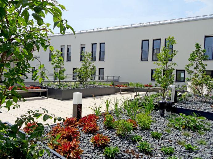 Genießen Sie den Ausblick auf den großzügig angelegten Dachgärten im Haus......2 Zimmer Wohnung!