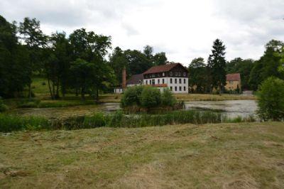 Grundstück in Waldrandlage von Bad Salzungen