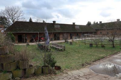 Jühnsdorf Bauernhöfe, Landwirtschaft, Jühnsdorf Forstwirtschaft