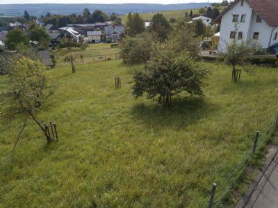 Schillingen Grundstücke, Schillingen Grundstück kaufen
