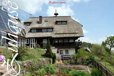 Eisenbach Häuser, Eisenbach Haus kaufen
