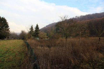 Ortsnahes Grundstück in Nußloch - perspektivische Investition!