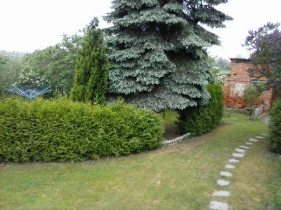 Garten seitl. Teil ( hinter Hecke = Garten Mieter)