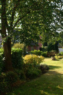 alter Baumbestand im Garten