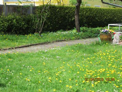 Garten Richtung Westen
