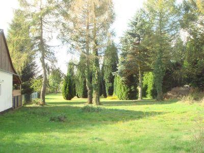 Hinterhofgarten