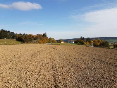 Ehingen (Donau) Grundstücke, Ehingen (Donau) Grundstück kaufen