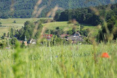Rastatt Bauernhöfe, Landwirtschaft, Rastatt Forstwirtschaft