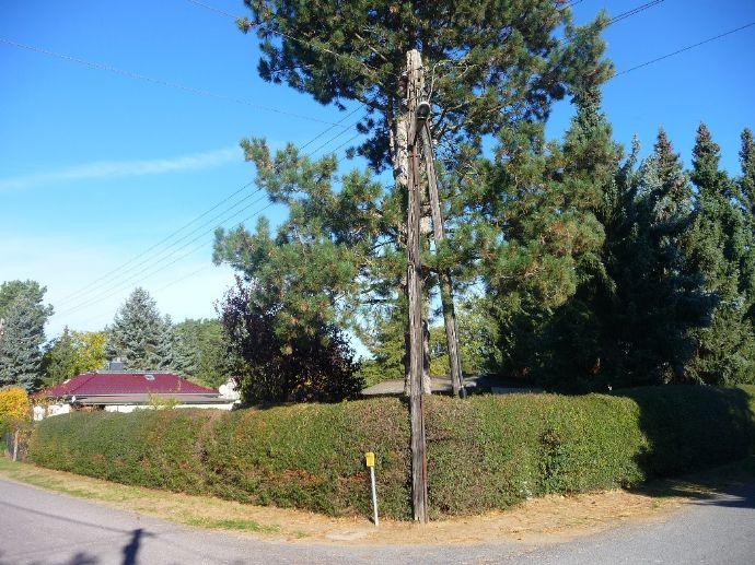 Attraktives Eckgrundstück zum Wohnhausbau in Bernau-Birkenhöhe