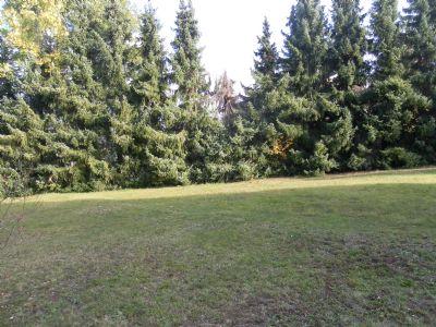 Gohrisch Grundstücke, Gohrisch Grundstück kaufen