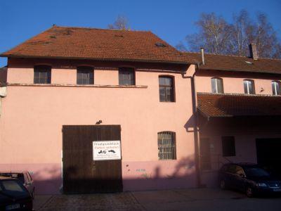 Roth Halle, Roth Hallenfläche