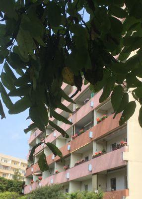 3-Raum-Wohnung mit Balkon ab sofort verfügbar