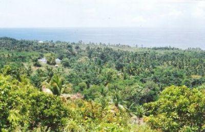 Moonlight Village, Lalin Atabay, Alcoy Cebu Häuser, Moonlight Village, Lalin Atabay, Alcoy Cebu Haus kaufen